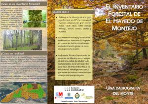 Triptico Inventario Forestal-1